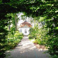 W ogrodzie arcybiskupów warszawskich
